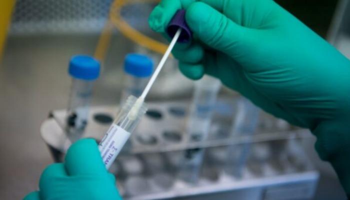 Confirmaron un caso de circulación comunitaria de la cepa británica del coronavirus en el país