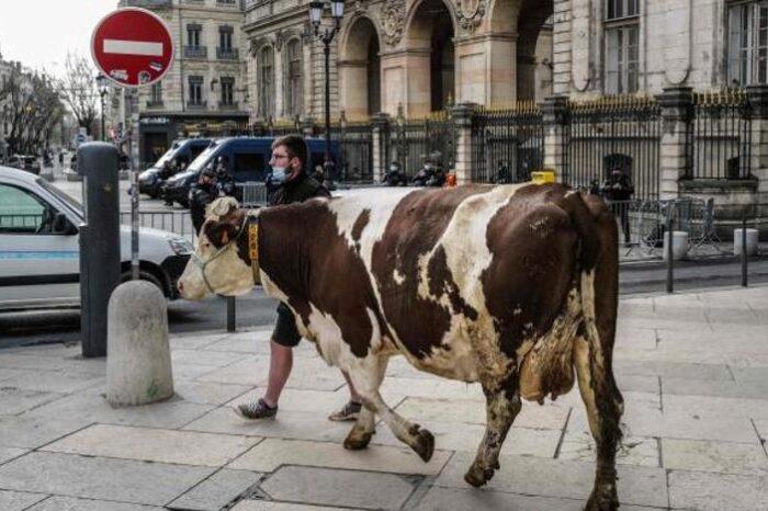 El menú escolar de Lyon crispa al Gobierno francés